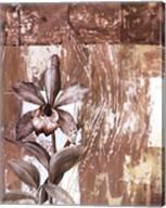 Nature's Orchids I Fine-Art Print