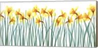 Floral Delight I Fine-Art Print