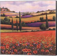 Fields of Poppies I Fine-Art Print