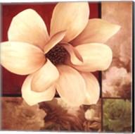 Magnolia Collage Fine-Art Print