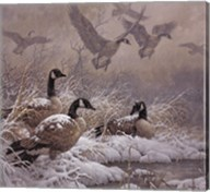 Winter Retreat (detail) Fine-Art Print
