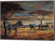 Zebras On The Plains Fine-Art Print