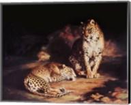 Pair Of Leopards Fine-Art Print