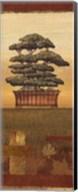 Bonsai II - Mini Fine-Art Print