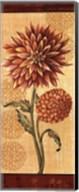 Dahlia II Fine-Art Print