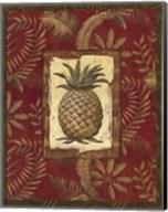 Exotica Pineapple - Grande Fine-Art Print