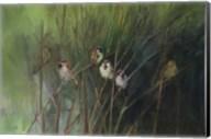 Summer Sparrows Fine-Art Print