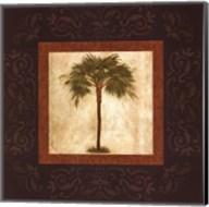 Mediterranean Palm Fine-Art Print