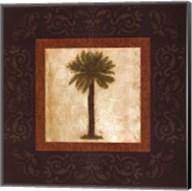 Sago Palm Fine-Art Print