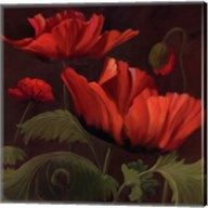 Vibrant Red Poppies II Fine-Art Print
