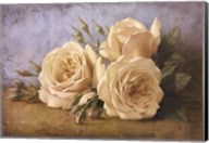 Roses From Ivan Fine-Art Print