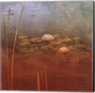 Pond Lilies II Fine-Art Print