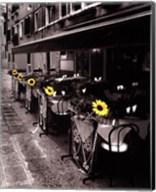 Sunflower Cafe Fine-Art Print