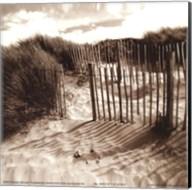 The Dunes Fine-Art Print