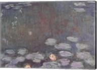 Water Lilies (dark) Fine-Art Print