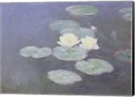 Nympheas Effet du Soir Fine-Art Print