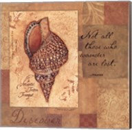 Discover - Shell Fine-Art Print