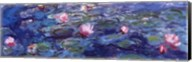 Water Lilies (blue and purple) Fine-Art Print