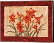 Linen Scroll Amaryllis Fine-Art Print