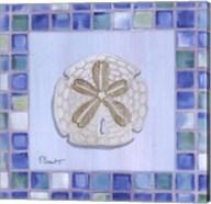 Mosaic Sanddollar Fine-Art Print