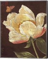 Garden Peony II Fine-Art Print