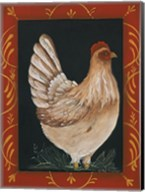 Chicken Fine-Art Print