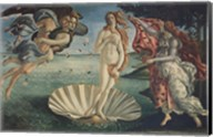 Birth of Venus Fine-Art Print