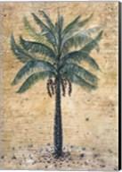Moroccan Ecstasy Fine-Art Print