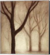 Forest I Fine-Art Print