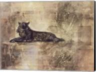 Tiger Profile Fine-Art Print