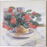 Geraniums, 1986 Fine-Art Print