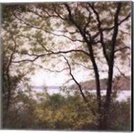 Lakeside Trees I Fine-Art Print