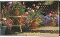 Potted Flowers Fine-Art Print