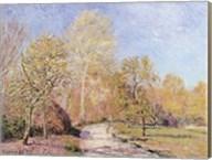 Autumn Landscape Fine-Art Print