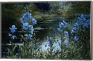 Blue Poppies Fine-Art Print