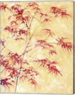 Talking to a Maple Tree Fine-Art Print