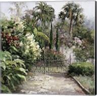 Palm Garden Fine-Art Print