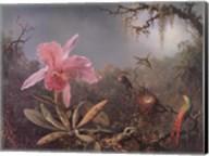 Cattleya Orchid and Three Brazilian Hummingbirds Fine-Art Print