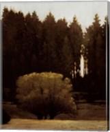 First Light Montana Fine-Art Print