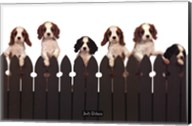 Curious Puppies Wall Poster