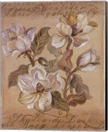 Magnolia l Fine-Art Print