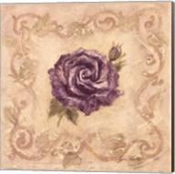 Rosier De Lavendre Fine-Art Print