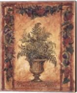 Natura Paragon Fine-Art Print