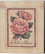 Vintage Felicia Rose Fine-Art Print