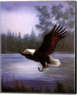 Eagle Fishing Fine-Art Print