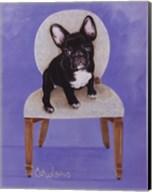 Lulu The French Bulldog Fine-Art Print