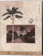 Nassau Fine-Art Print