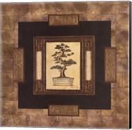 Art Of Bonsai I Fine-Art Print