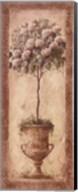 Floral Topiary I Fine-Art Print
