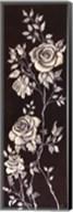 Ivory Roses II Fine-Art Print